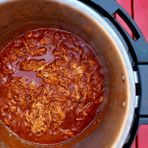 Easy Instant Pot BBQ Pulled Pork recipe by Feisty Tapas